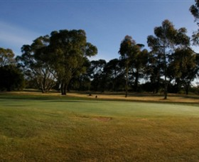 Winchelsea Golf Club - Accommodation Port Macquarie