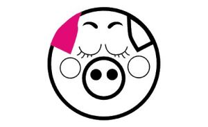Pink Pig - Accommodation Port Macquarie
