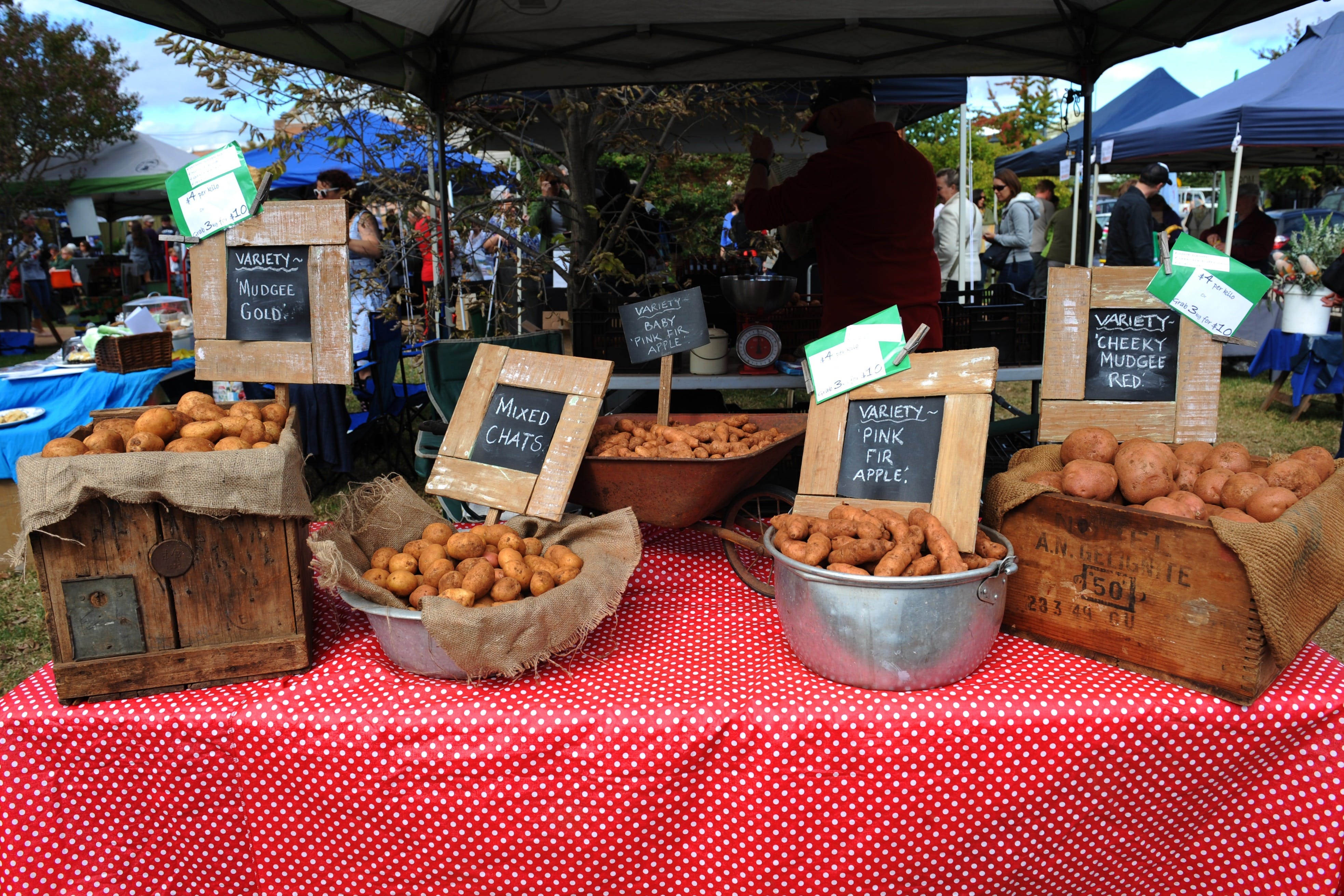 Lawson Park Markets - Accommodation Port Macquarie