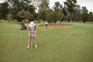 Nine and Dine Golf and Buffet Dinner with Seafood - Accommodation Port Macquarie