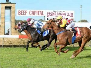 Casino Cup - Accommodation Port Macquarie