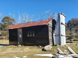 Hedonistic Hiking's Razorback to Harrietville - Accommodation Port Macquarie