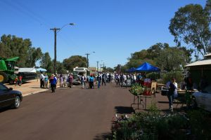 Nungarin Markets - Accommodation Port Macquarie