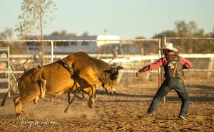 Walgett Charity Bushman's Carnival Rodeo and Campdraft - Accommodation Port Macquarie