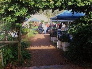 Berry Produce Market - Accommodation Port Macquarie