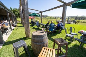 Live Music Sundays at Mountain Ridge Wines - Accommodation Port Macquarie