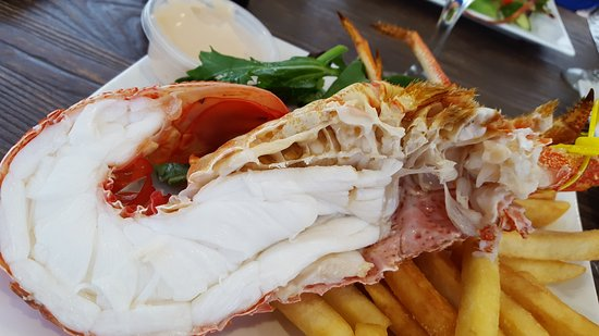 Tasmanian Gourmet Seafoods - Accommodation Port Macquarie