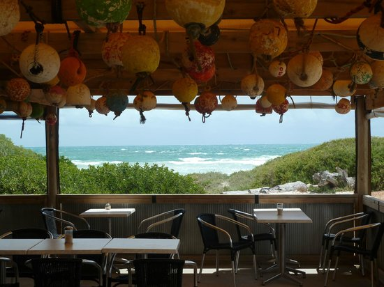 Starfish Cafe - Accommodation Port Macquarie