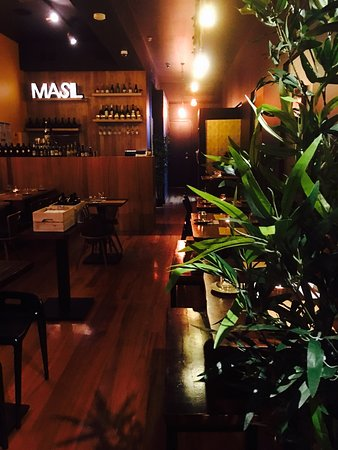 Masil - Accommodation Port Macquarie