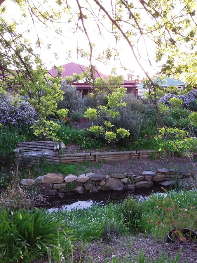 Frog Song at Willunga - Accommodation Port Macquarie