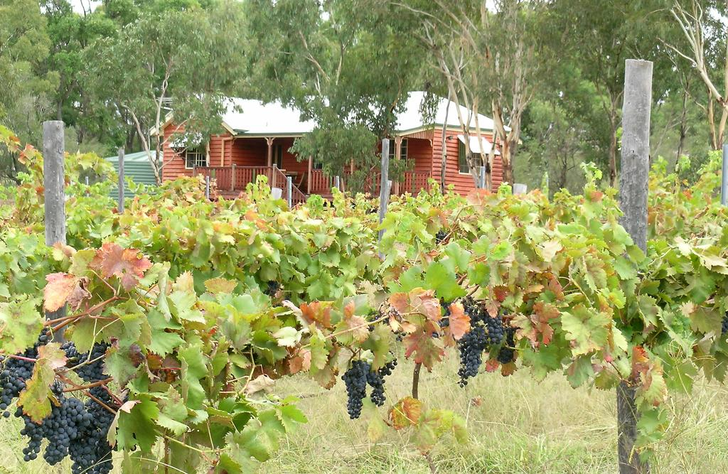 Fergies Hill Spa Cottage  Granite Ridge Wines - Accommodation Port Macquarie