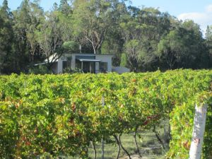 Just Red Wines Cabins - Accommodation Port Macquarie