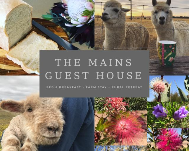 The Mains Guest House - Accommodation Port Macquarie