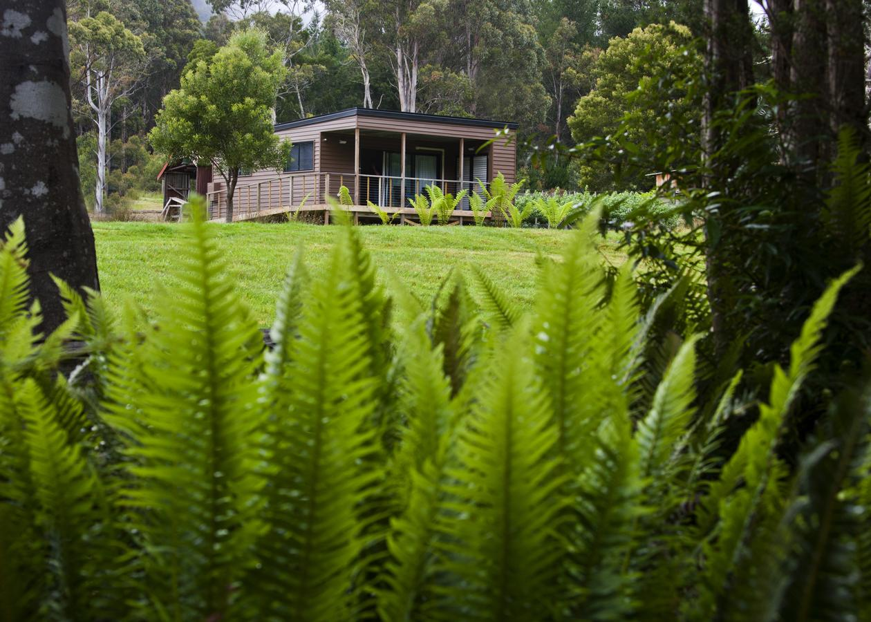 Tyenna River Cottage - Accommodation Port Macquarie