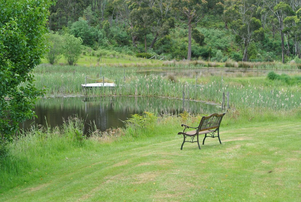 Hamlet Downs Country Accommodation - Accommodation Port Macquarie