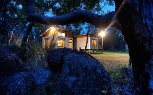 Severn-dipity - Accommodation Port Macquarie
