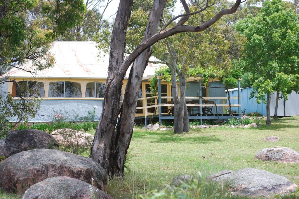 Twisted Gum Vineyard Cottage - Accommodation Port Macquarie