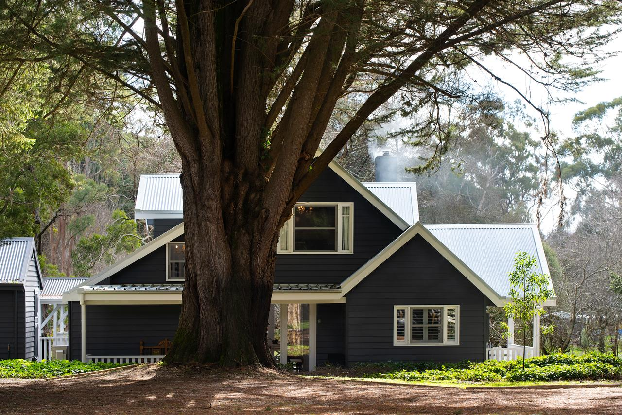 The Orchard - Accommodation Port Macquarie