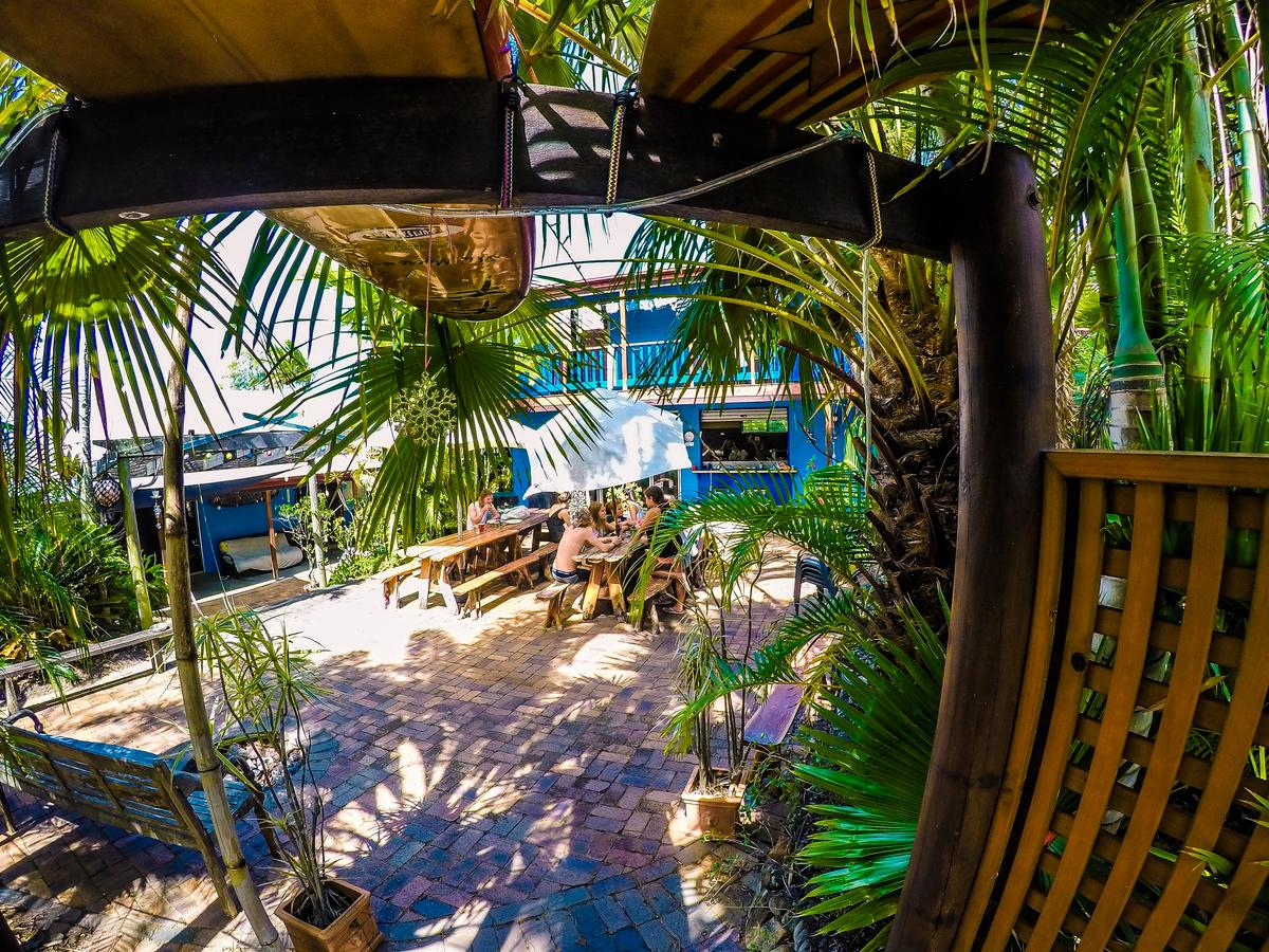 Cool Bananas Backpackers - Accommodation Port Macquarie
