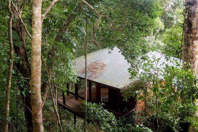 Cairns Reef  Rainforest BB - Accommodation Port Macquarie